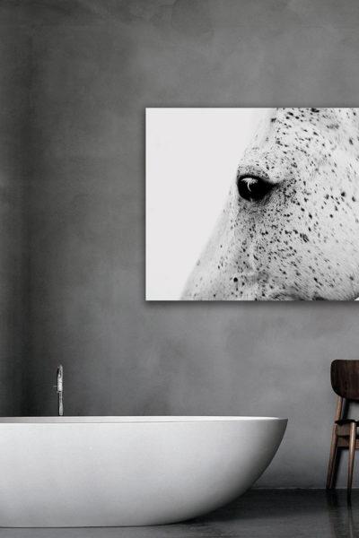 Canvas_Gold_Cavallo-Bianco